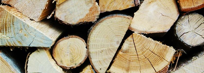 Cassol Marco legna per stufe su misura