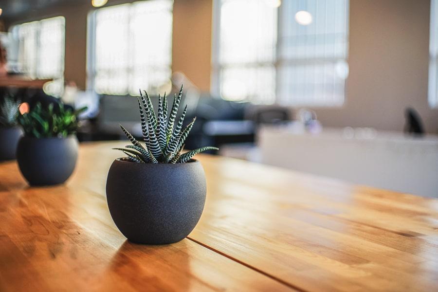 Arredo ufficio 2020: nuove tendenze, stili e riscaldamento a legna